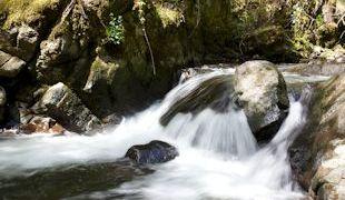 Wasserschnelle in der Vulkaneifel